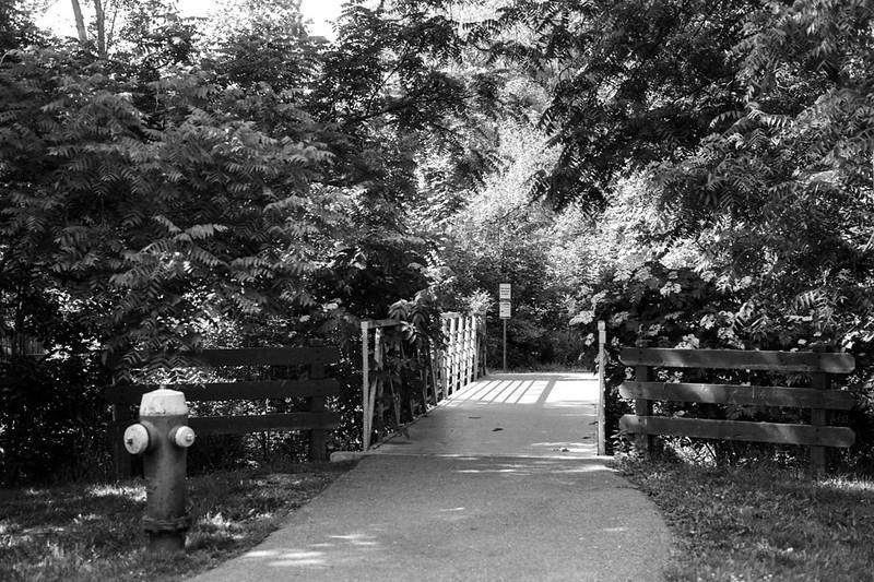 Bridge Across Morrison Creek  July 2020