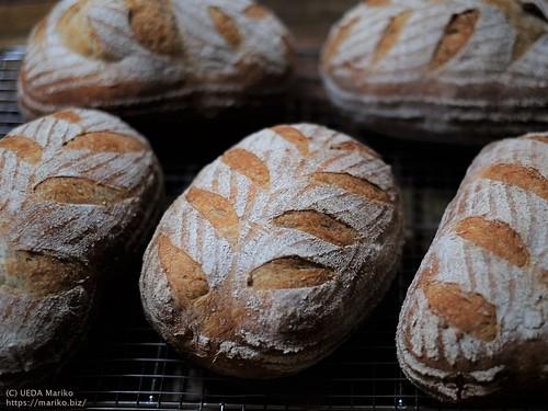 ライ麦パン 20200707-DSCT9887 (2)
