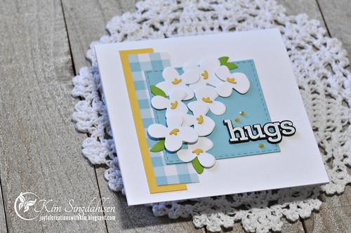 Hugs Close