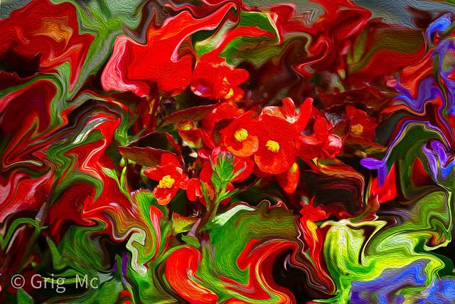colourfulreds2-3