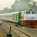 Serayu Train