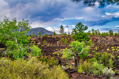 View at Sunset Crater - Lava Flow Trail