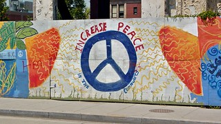 """Increase peace in the community"" 