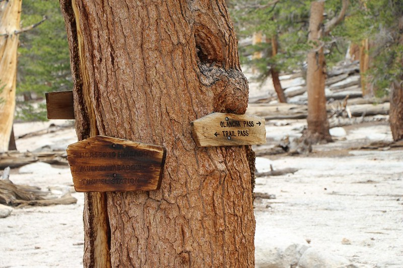 Trail signs at Mulkey Pass - the trail was very faint and appeared to be rarely used