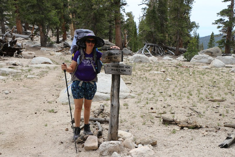 Trail sign at Trail Pass - we would be taking the PCT southbound from here