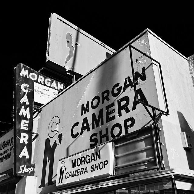 morgan camera shop. hollywood, ca.  2015.