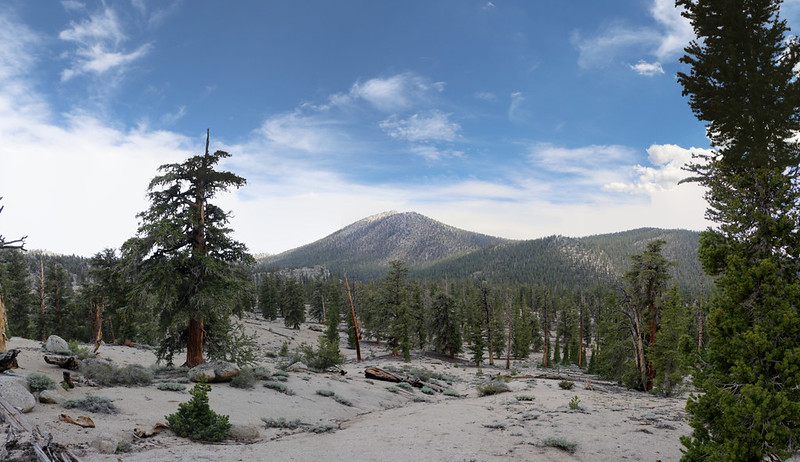 Panorama view of Muah Mountain (11016 feet elevation) as we continue south along the Sierra Crest