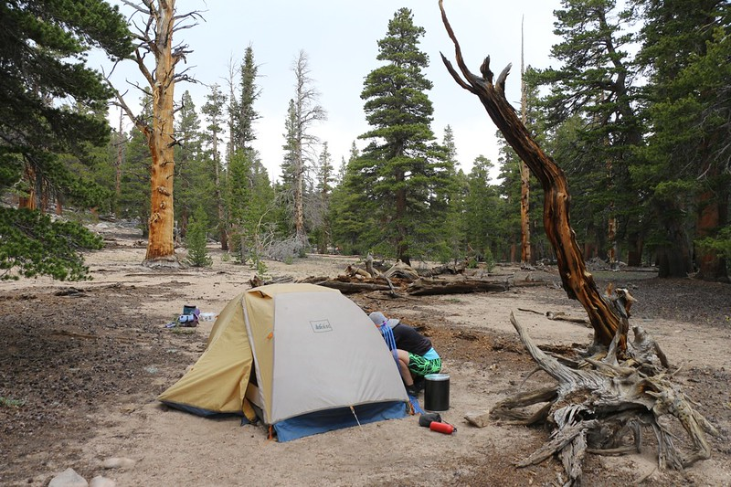 We set up camp early at PCT mile 736.3 on the south side of Ash Meadow - we put up the tent fast in case it rained