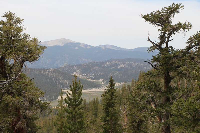 Looking west over Mulkey Meadow from the PCT near Trail Pass, with Kern Peak (11510 ft elev) on the left