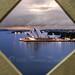 Sunrise from North Pilon Sydney Harbour Bridge