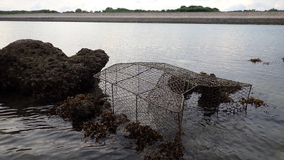 Large fish trap on Terumbu Semakau