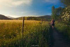 Senda del Oso | Montaña Palentina | 2017