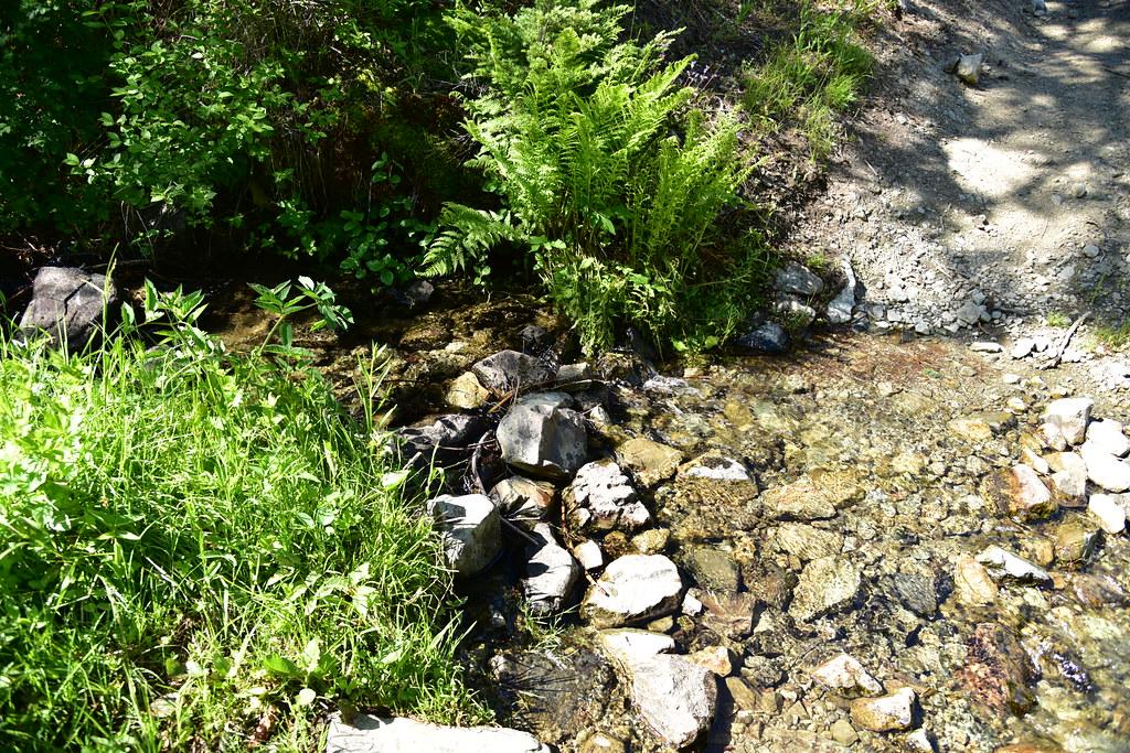 Bolan Creek