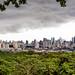 Panama City from Cerro Cedro  _1120