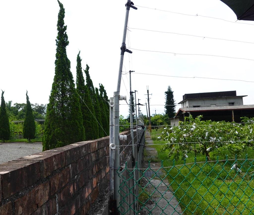 因果園緊鄰住宅圍牆,有獼猴藉此越過圍網,因此再靠牆側加高四條電圍網約50公分。孫文臨攝