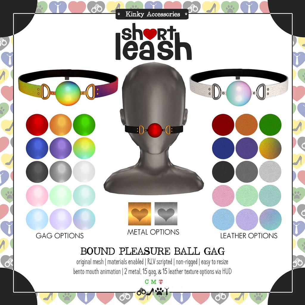 .:Short Leash:. Bound Pleasure Ball Gag