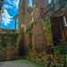 "<p><a href=""https://www.flickr.com/people/152745871@N02/"">nickym6274</a> posted a photo:</p>  <p><a href=""https://www.flickr.com/photos/152745871@N02/50090132303/"" title=""Castle Basement""><img src=""https://live.staticflickr.com/65535/50090132303_1f74a6efdb_m.jpg"" width=""160"" height=""240"" alt=""Castle Basement"" /></a></p>  <p>shows what is left of Kenilworth castle</p>"