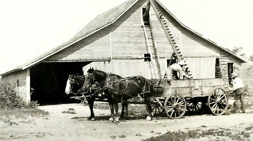 Old Farm with Work Horses