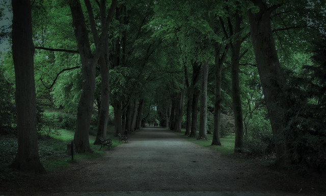 Parkway…