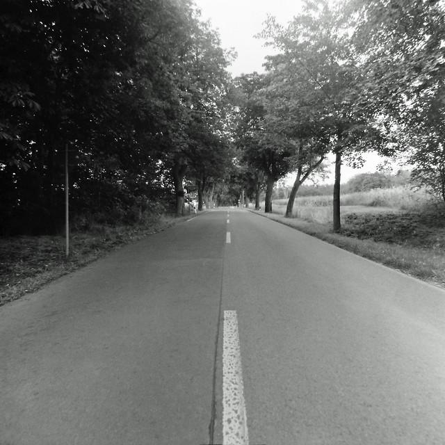 Brandenburger Allee 2.7.2020
