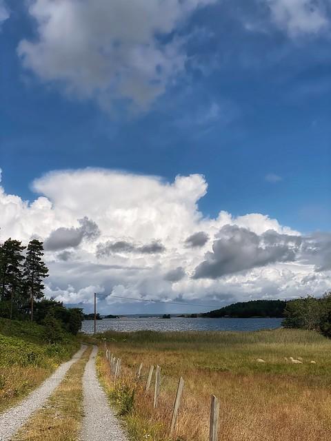 View towards Bråviken