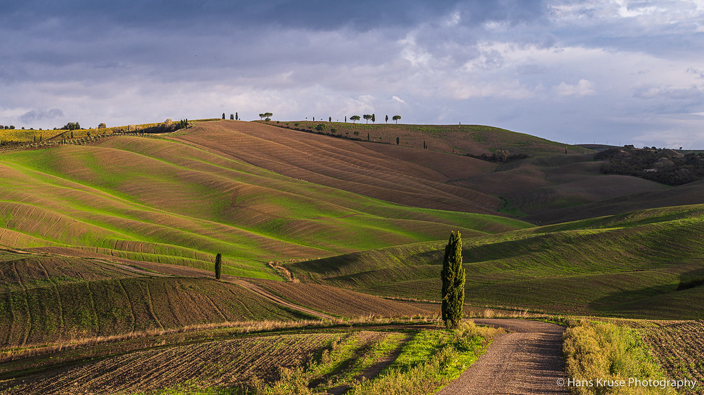 Tuscan hills in morning light