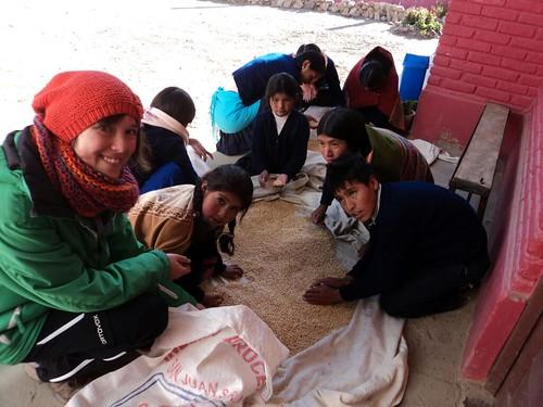 Bolívia.žatva