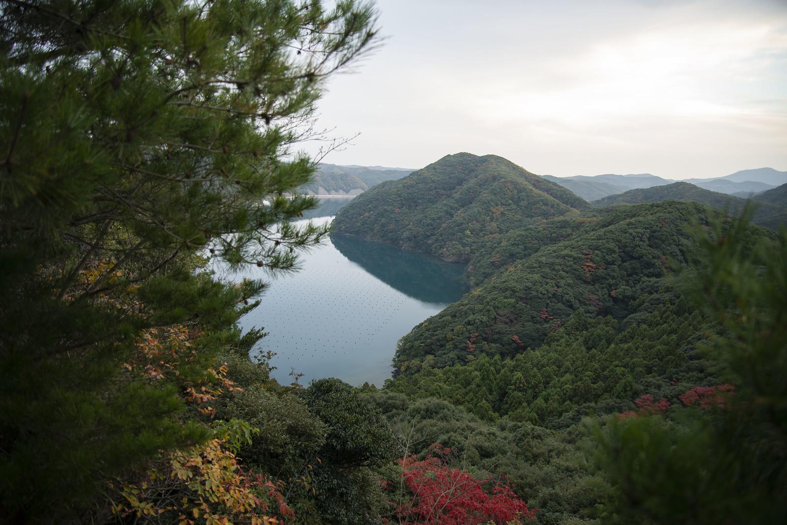 50090875163 29e1baa184 h - Ghost of Tsushima: Das Erschaffen der Welt von Tsushima