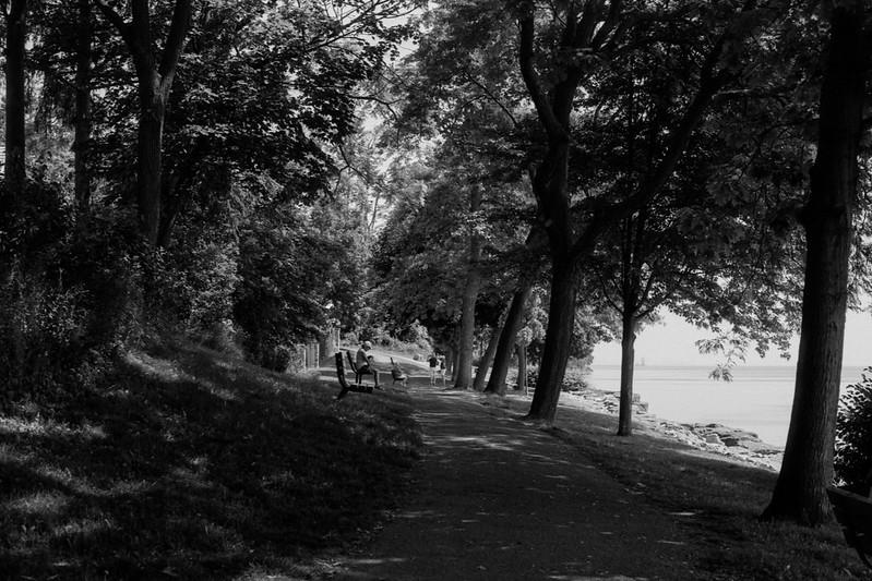 Shaded Dingle Park_