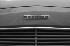 Anglia - VMF60560 - DoubleA highGrain - JPEG Full size