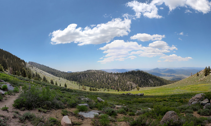 Panorama view over Brush Meadow on the PCT on the southwest slope of Olancha Peak