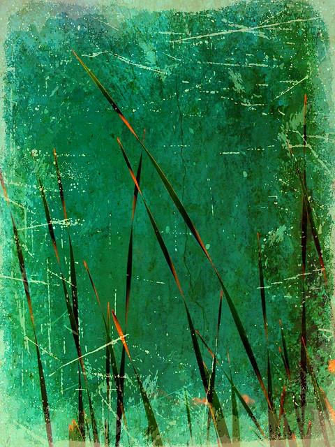 textured reeds