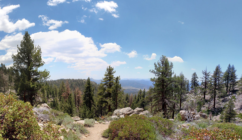 Hiking downhill on the Pacific Crest Trail on a pretty Summer day on the southern Sierra - this is the life!