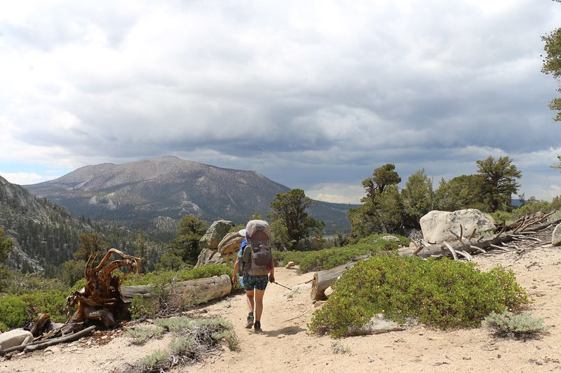 The cumulus clouds looked like rain in the distance to the west and south, but not here, where we were hiking