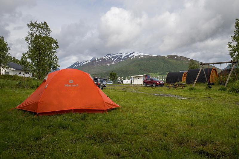Fjordbotn