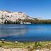 May Lake Mt Hoffman-97.jpg