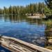 May Lake Mt Hoffman-99.jpg