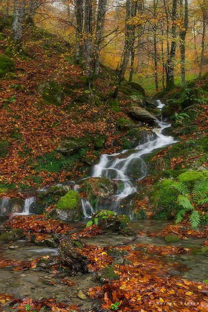 El otoño en el Pirineo navarro