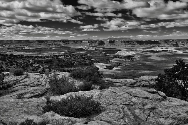 Foreground and Background (Black & White, Canyonlands National Park)