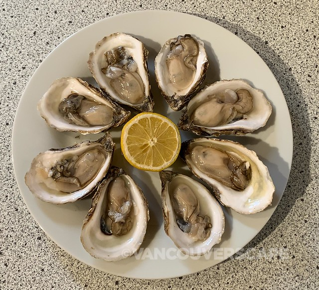 Cascumpec Bay Oysters-4