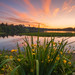 Deer Lake Park by erwin.delfin_photography