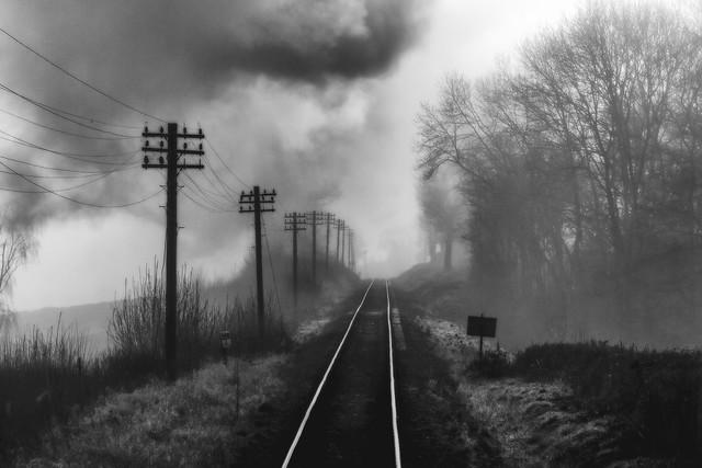 'Telephone Lines'