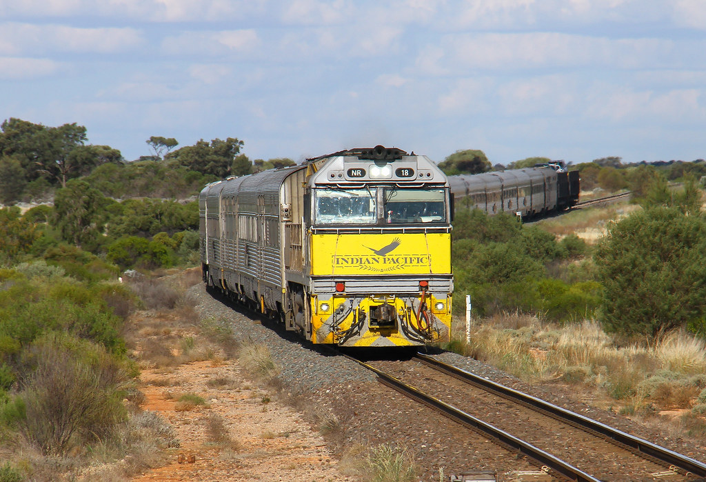 NR18 on the Indian Pacific by David Arnold
