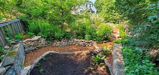 2020 Garden Dig 16