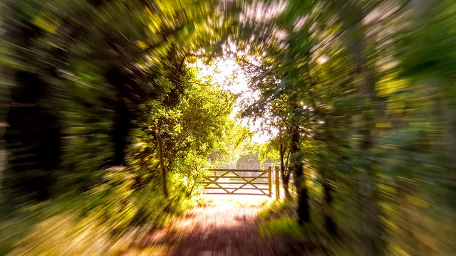 Towards the Gate.  (Mobile phone shot)