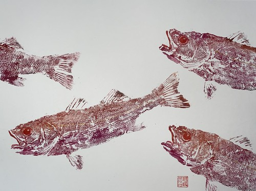 Sea bass 029 | £62 inc p&p UK | 2020 | 51x38cm |Japanese Paper on Hahnemuele Britannia Watercolour Paper