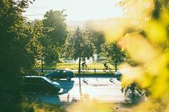 Traffic | Kaunas #190/365