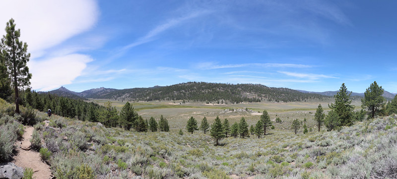 Panorama view of Beck Meadow from the PCT at mile 714