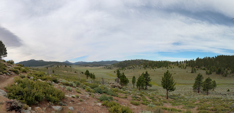 Panorama shot of Monache Meadow where it enters Cow Canyon, with Deer Mountain on the far left