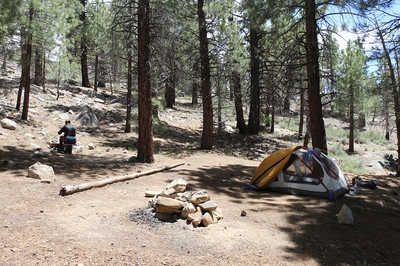 Our campsite at PCT mile 713 was quite nice, and had plenty of shade under the pines, and less wind